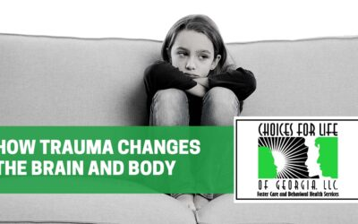 How Trauma Changes the Brain and Body